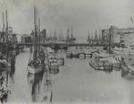 Oswego Harbor