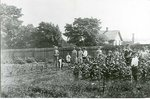 School Gardens - World War I