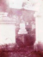 Mary Sheldon Barnes' gravesite